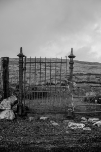 Welsh Landscape